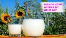 Manda sütü hangi hastalıklara iyi gelir? Manda sütü astıma iyi gelir mi?
