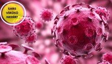 Sars virüsü nedir? Sars Cov 2 nedir?