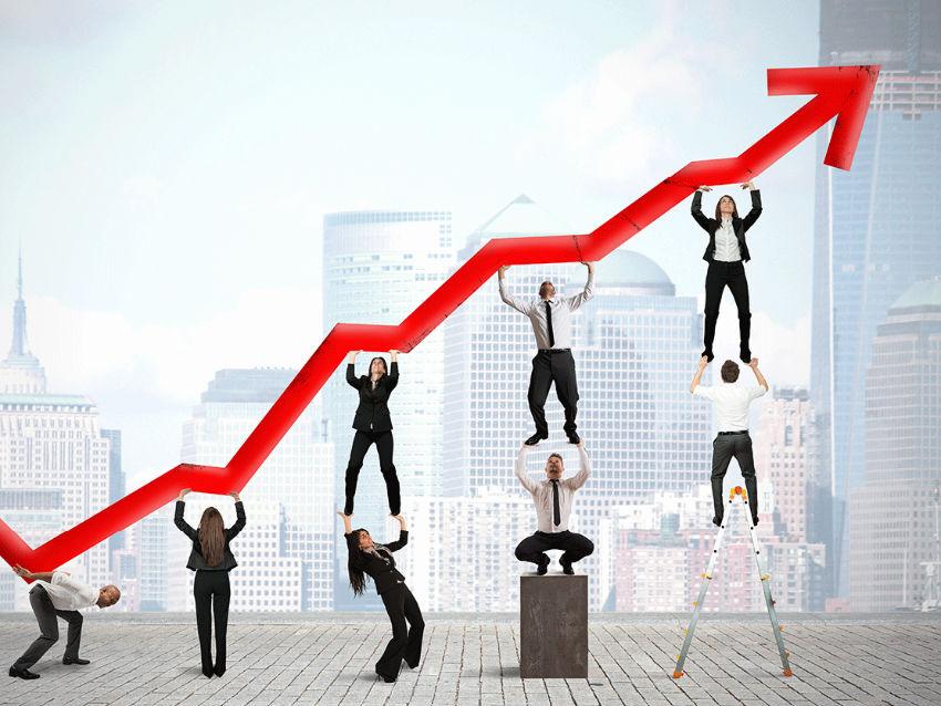 Yatay Büyüme Şekilleri Neler?
